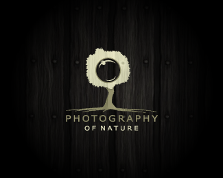 Camera Logo Design And Photography Logo Design