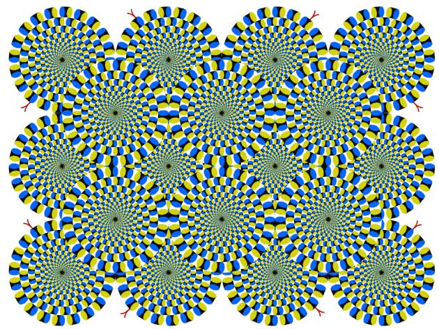 rotatingsnakes
